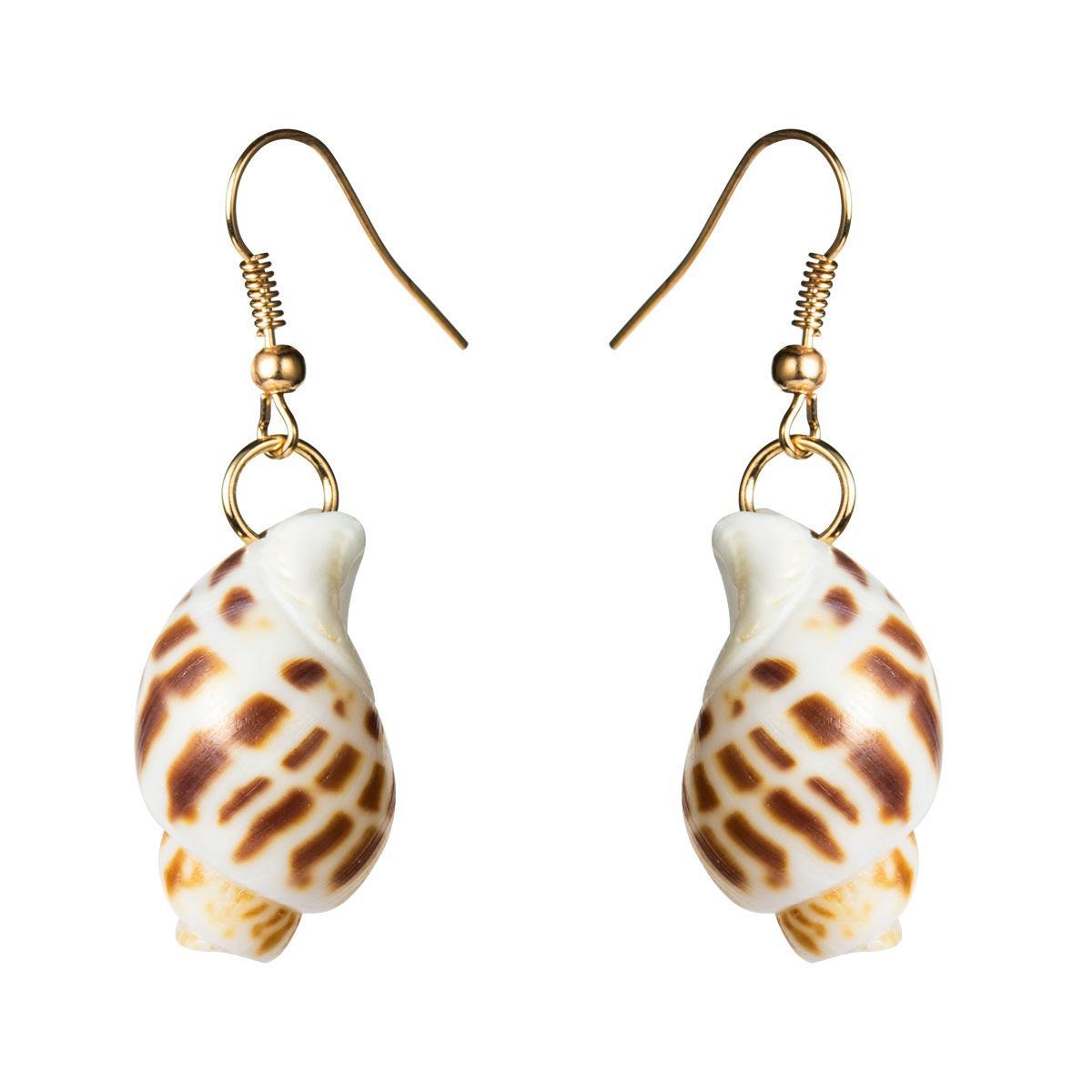 Pendientes de concha de concha de la simplicidad elegante de las mujeres NHJE121653