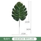 NHAH1809636-Green-Turtle-Leaf