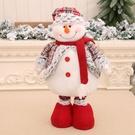 NHMV1837066-snowman