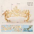 NHHS1895136-Golden-TS-J2966